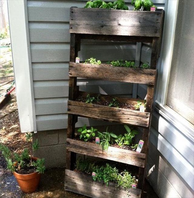 Pallet Herb Garden A Source Of Natural Remedy Pallet