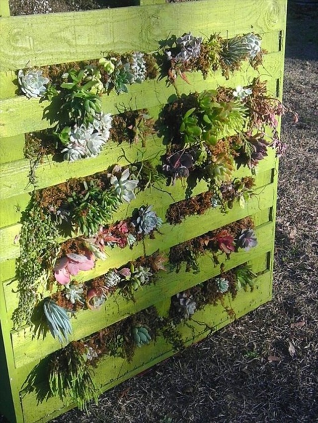 Vertical Gardening out of Recycle Pallets | Pallet ...