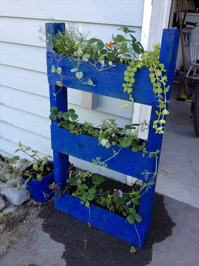 Vertical gardening out of recycle pallets pallet for Vertical pallet garden