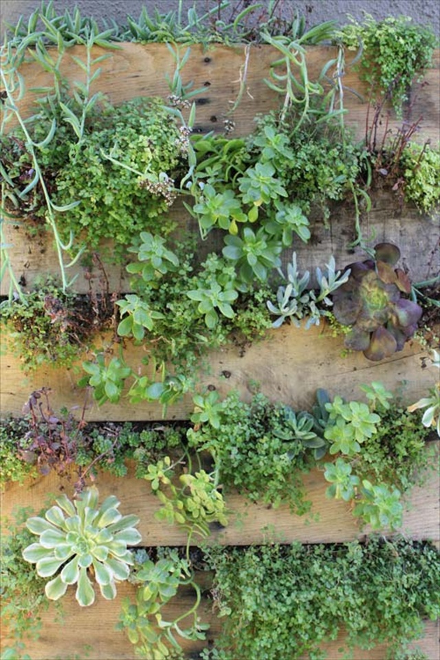 DIY Pallet Garden Give Sense of Freshness Indoor | Pallet Furniture ...