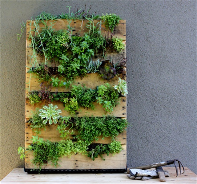 DIY Pallet Garden Give Sense of Freshness Indoor
