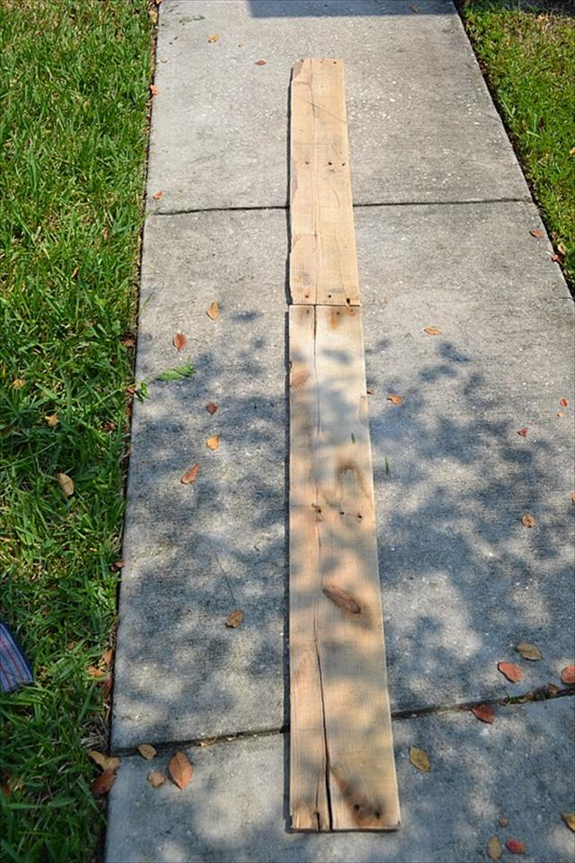 Pallet Growth Chart