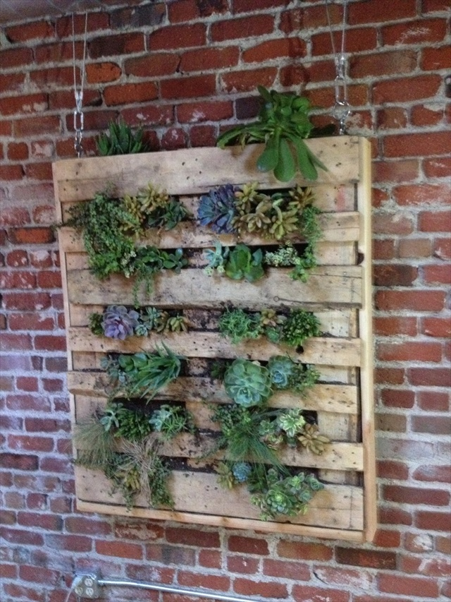 Diy vertical garden with pallet pallet furniture plans for Vertical pallet garden