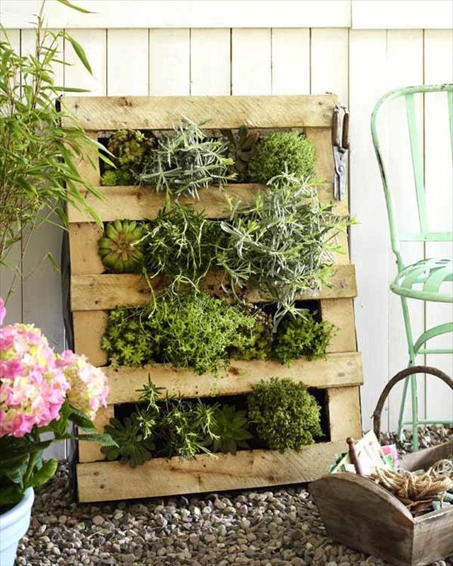 DIY Vertical Garden with Pallet