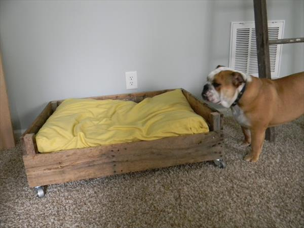 placing of mattress on pallet bed