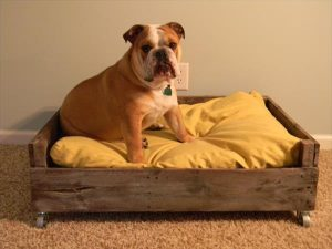 diy pallet dog bed with recycled pallets.