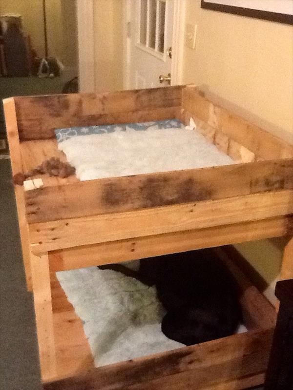 Diy pet bunk bed plans to build dog bed pallet for Pet bunk bed gallery