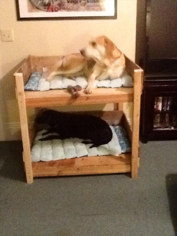 woodworking diy pallet dog bed plans plans pdf download