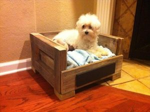 handcrafted pallet dog bed
