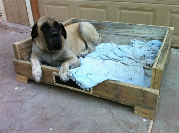 diy pallet pet bed