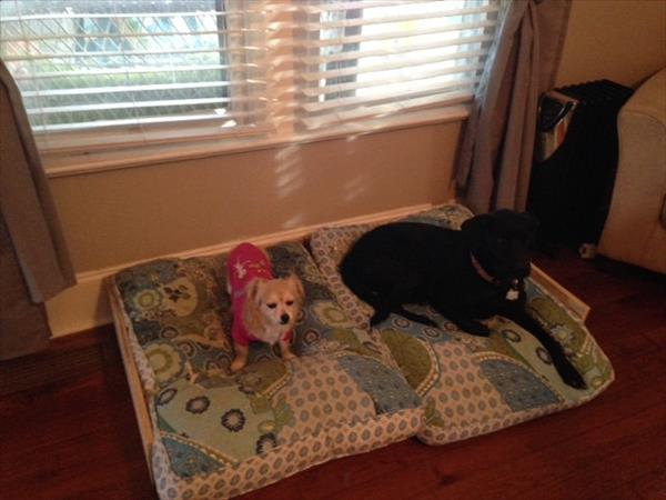 repurposed pallet dog and cat bed