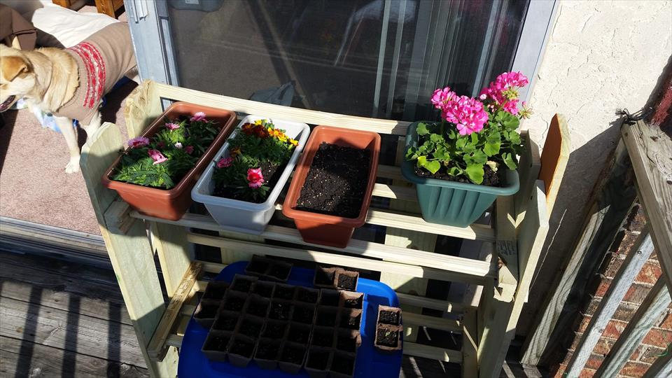 diy pallet planter stand or pot organizer